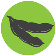 soybean_symbol.png