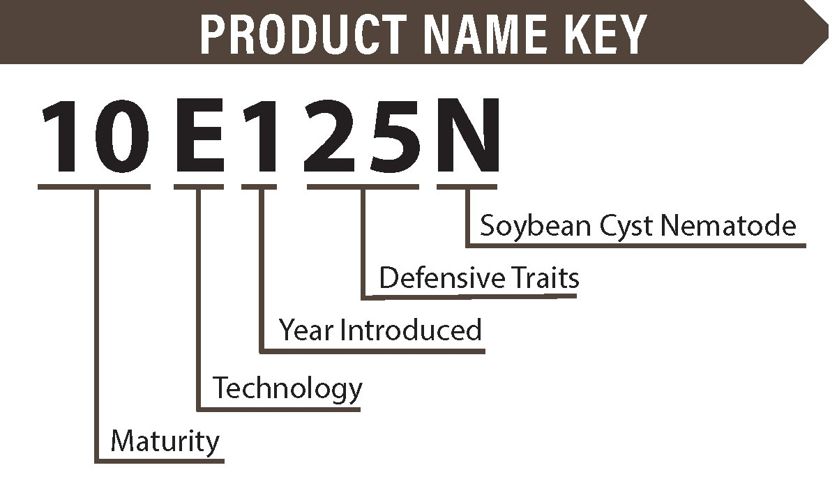 Impact soybean key.jpg