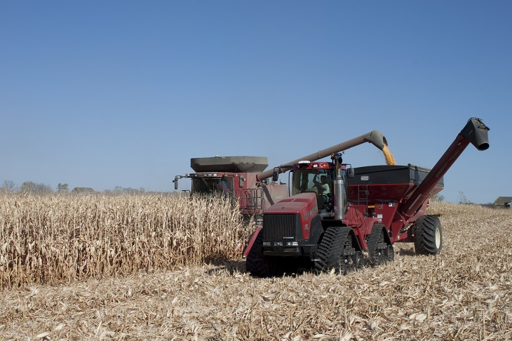 corn_harvest_blog.jpg